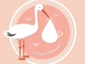 stork-with-baby-vector_23-2147497833.jpg